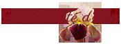 La Beauté d'Iris Logo